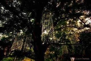 Marbella Weddings - Lighting 1