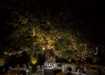 wedding venue private finca Marbella